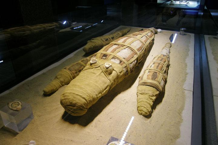 Xác ướp cá sấu ở đền thờ Sobek