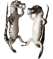 Cá sấu nhồi bông kiểu đứng hàng phong thuỷ giá rẻ tại Kiều Hưng