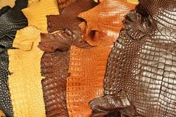 [TƯ VẤN] Da cá sấu phần nào đẹp nhất tốt nhất, vì sao?
